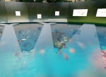 la-maison-des-sagesses-aquarium